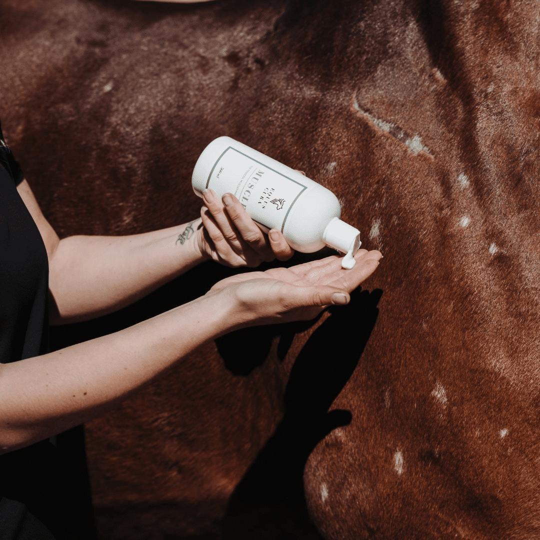 muscle og hest